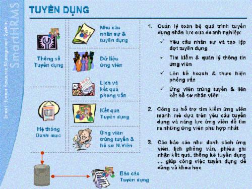 Quan Ly Tuyen Dung